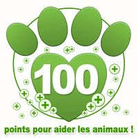 2013_donation_100_points_bonus_0.jpg